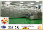 Chine Chaîne de production de fruits secs de fruits et légumes certification d'ISO9001 usine