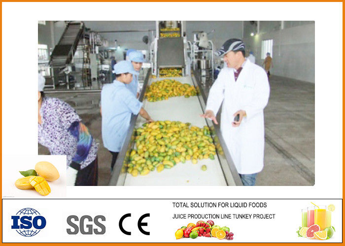 CFM-M-03-03T 3T/H Mango Processing Line Professional and High Efficiency
