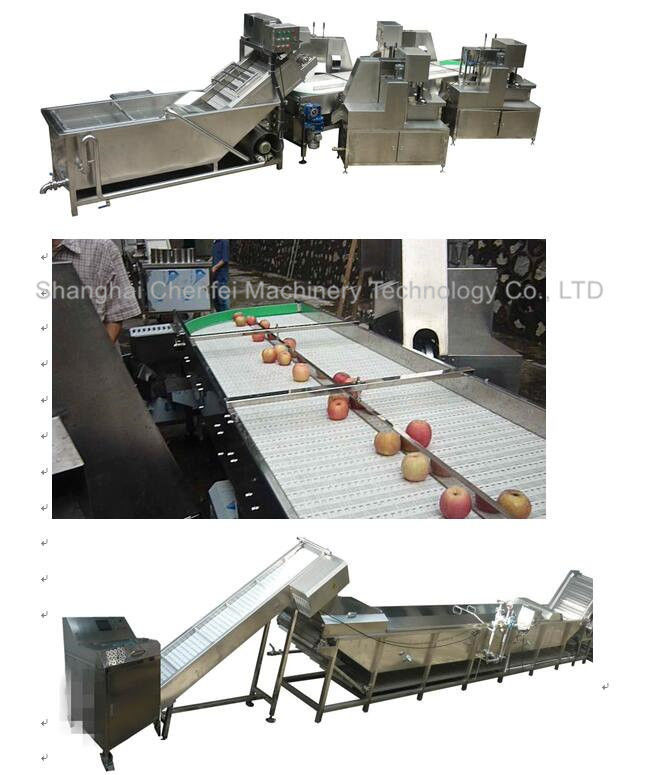 Stainless Steel 304 Dried Fruit Processing Equipment ISO9001 Certification